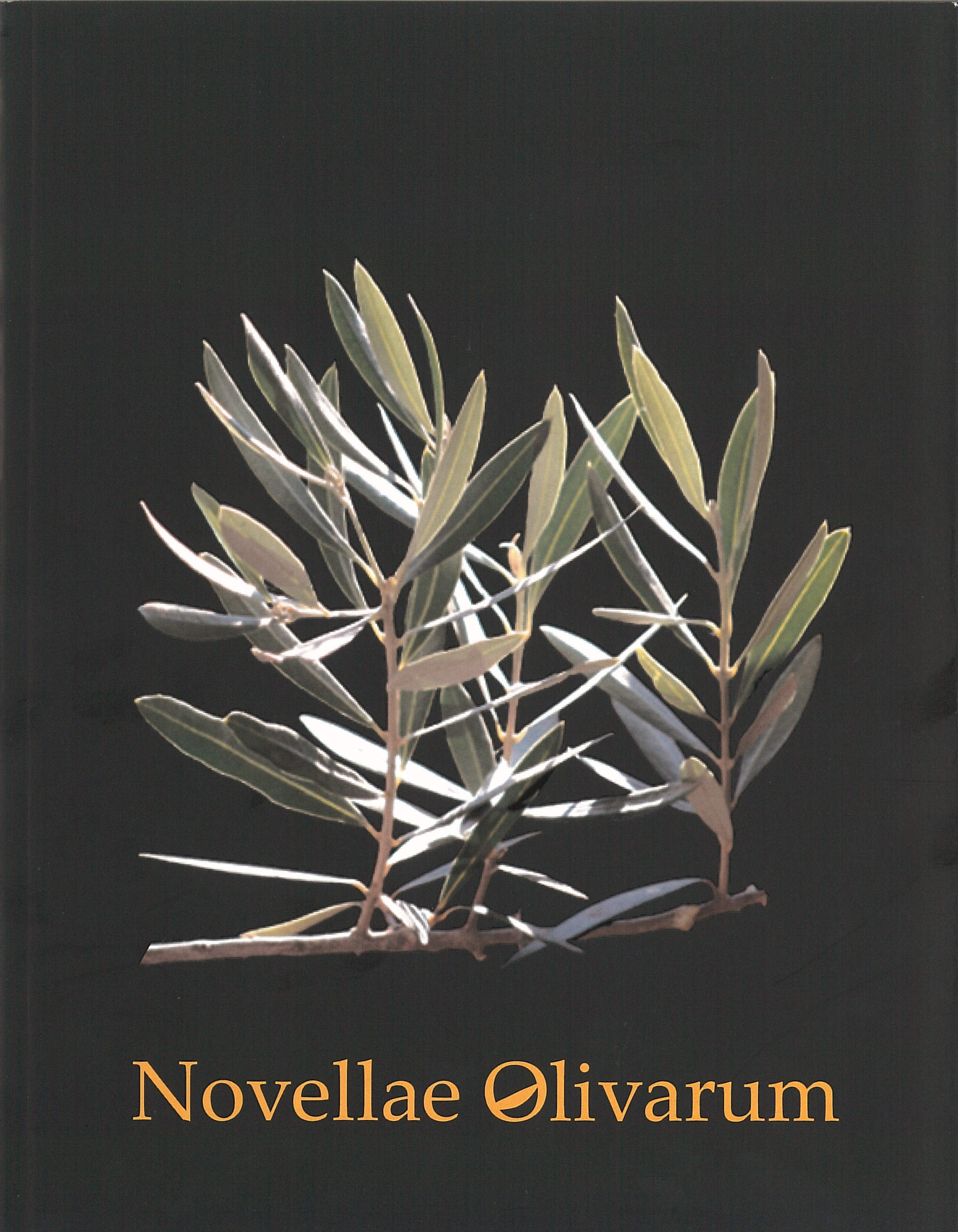 Revista Novellae Olivarum, nº 33 - Outubro de 2006 (capa)