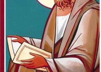 Revista Novellae Olivarum, nº 37 - Novembro de 2008 (capa)